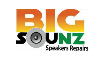 BigSounz Speaker Repairs New Zealand